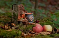 The Wiccan Sabbat of Mabon is considered a time of balance & gratitude, to stop, rest and relax, and enjoy the fruits of personal harvests. #autumn #autumnal_equinox #mytumblr