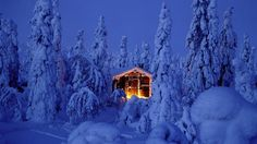 Log Cabin Winter Scenes | Snowy spruce forest with log cabin in Riisitunturi National Park ...