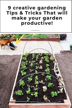 9 AWESOME DIY IDEAS FOR YOUR GARDEN garden ideas, gardening ideas, gardening for beginners, gardening design, gardening tools, gardening hacks, gardening and landscape, gardens and gardening ideas #gardening #gardenhacks #gardeningideas Gardening For Beginners, Gardening Tips, Gardening Gloves, Amazing Gardens, Hacks, Garden Ideas, Diys, Outdoor Decor, Plants