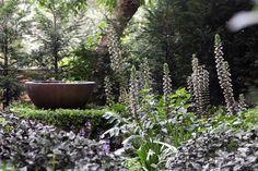 Gardens | Spirit Level Designs