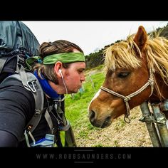 The #horse whisperer while #traveling through #hokkaido #walking #japan, #sapporo to #osaka  robbsaunders.com        #WordSwagApp