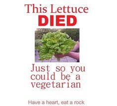 people are so cruel! haha