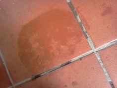Impara a pulire in modo naturale il cotto, sia da esterno che da interno: eviterai di danneggiare il pavimento utilizzando prodotti ecologici e fai da te.