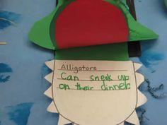 Alligator craft with writing