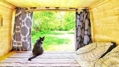 #madbzh #vanlife #cat #bzh #lifestyle Van Life, Mad, Animals, Lifestyle, Animales, Animaux, Van Living, Animal, Animais