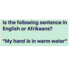 Wait what? #southafrica #afrikaans #english