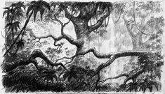 rough layout drawing from The Jungle Book (1964)