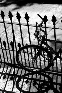 Bike - Matt Arpen
