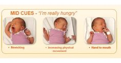 Newborns don't come with an instruction manual, but this chart is pretty close. It's a visual guide to help recognise baby's hunger cues