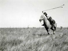 cazando algun avestruz