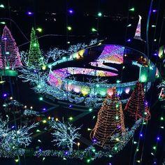 段々と肌寒くなってきた10月。そろそろクリスマスや冬の計画を立てている方も多いのではないでしょうか。そこで今回は東京都内のイルミネーションスポットをご紹介します。また、中には日程が出ていないものもございますので、各公式HPにてご確認ください。