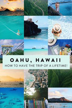 Oahu's Top 10: How to Have the Trip of a Lifetime! See Honolulu, Waikiki, the North Shore, swim with dolphins, and more.
