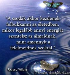 Richard Wilkins gondolata a csodákról. Quotations, Qoutes, Life Quotes, Richard Wilkins, Proverbs, Signage, Bible Verses, About Me Blog, Wisdom