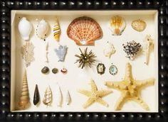 How to Secure Items in a Shadow Box
