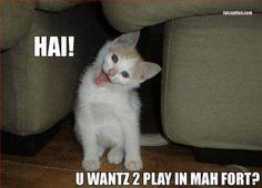awe!! lol