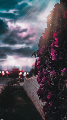 Floral Wallpaper Phone, Galaxy Wallpaper Iphone, Bright Wallpaper, Happy Wallpaper, Night Sky Wallpaper, Cloud Wallpaper, Flower Background Wallpaper, Aesthetic Pastel Wallpaper, Scenery Wallpaper