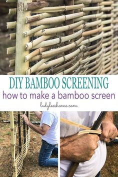 DIY Bamboo Screening. Let's learn about bamboo! It's an amazing plant that can be used for fencing and screening. Learn how to build a bamboo screen or a bamboo fence. #bambooscreening #bamboofence #diybamboofence #diybambooscreen