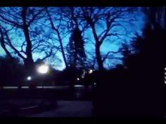 Vienna Nights. -