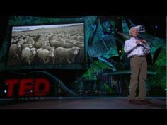 """Desertification is a fancy word for land that is turning to desert,"" begins Allan Savory in this quietly powerful talk. And terrifyingly, it's happening to about two-thirds of the world's grasslands, accelerating climate change and causing traditional grazing societies to descend into social chaos. Savory has devoted his life to stopping it. He..."