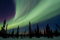 The Aurora Borealis lights up the sky with green and violet over Trapper Creek, Alaska