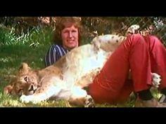A História Completa de Christian, o Leão