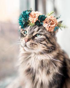 Happy Flower Crown Friday!