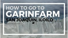 Garinfarm is one of the most popular tourist attractions and things to do in Iloilo today. It not just a farm but a place of worship, leisure and pilgrimage . Iloilo City, Stuff To Do, Things To Do, Lenten Season, Spring Resort, Place Of Worship, Heaven On Earth, Pilgrimage, To Go