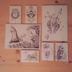 little collection of my draws  follow me at : Instagram  @cipananatalia a FB: www.facebook.com/cipananatalia TUMBRL www.tumlr.com/cipananatalia