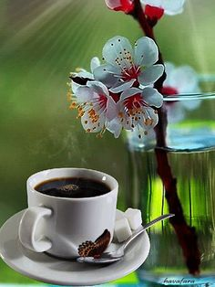 Good Morning Gif Images, Good Morning Coffee Gif, Beautiful Morning Messages, Good Morning Images Flowers, Good Night Gif, Beautiful Flowers Wallpapers, Beautiful Gif, Coffee Love, Coffee Art