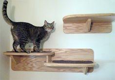 Double Cat Shelf  $95.00