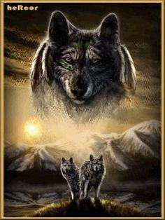 tres lobos art 240 hc