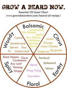 Table of Contents Essential Oil Scent Guide Pairing Essential Oils Top Essential Oils Essential Oil Sample Packs Essential oils give your products, whether a beard balm or beard oil, its unique per…
