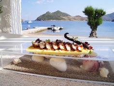 Grilled octopus.   Grilled Octopus, Grilling, Restaurant, Fresh, Dishes, Kitchens, Crickets, Diner Restaurant, Tablewares