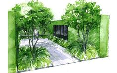Chelsea Flower Show 2014: promise of peace in war-inspired gardens - Telegraph