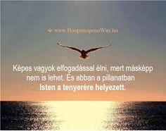 Hálát adok a mai napért. Megtaláltam a békémet, amint felfedeztem a saját helyemet. Azóta képes vagyok elfogadással élni, mert másképp nem is lehet. És abban a pillanatban Isten a tenyerére helyezett. Így szeretlek, Élet!  ⚜ Ho'oponoponoWay Magyarország www.Hooponoponoway.hu
