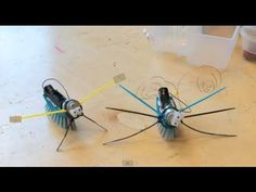 Maak een robot van een afwasborstel Science Videos, Easy Science, Science For Kids, Crafts For Boys, Projects For Kids, Kid Crafts, Stem For Kids, Diy For Kids, Cubes