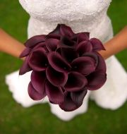 Calla Lilly Bridal Bouquet | Mini Calla Lily Bouquet | Calla Lily Wedding Bouquet | Deep Purple Calla Lily Bouquet at BunchesDirect