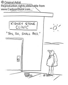 Kidney Stone funny cartoons from CartoonStock directory - the world's largest on-line collection of cartoons and comics. Kidney Stones Funny, Kidney Stone Humor, Make Em Laugh, Animal Facts, Kidney Disease, Funny Cartoons, The Funny, Surgery, I Laughed
