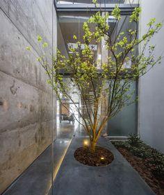 Gallery of MISA Studio / Wanjing Design - 4