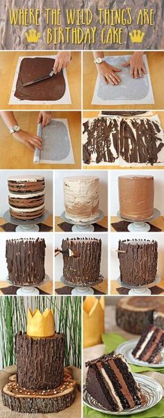 Step by step tutorial on a chocolate salted caramel tree stumo cake including recipes!