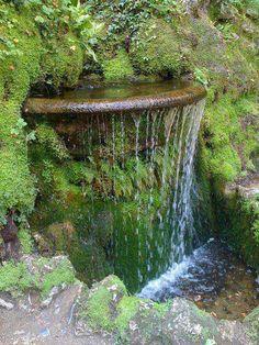 Garden Waterfall,  Ireland