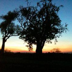 Sunset Simpsonville, KY