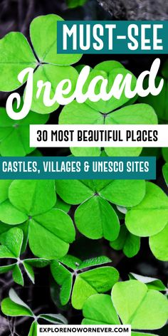 30 Most Beautiful Places in Ireland: See the Emerald Isle The most beautiful places in Ireland? Travel writers share 30 of their favorite castles, UNESCO sites, quaint Irish villages, secret spots, and more. Ireland Travel Guide, Dublin Travel, Europe Travel Guide, Paris Travel, Travel Bags, Golf Travel, Travel Packing, Travel Guides, Fairy Pools