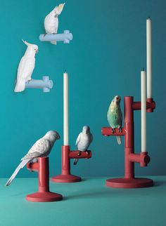 Lladro Parrot Collection