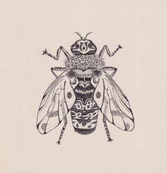 Horse Fly (Bug) Illustration by Stippling or Pointillism