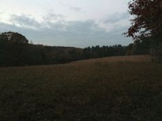 Darkness falls over the large wheatfield at Pickett's Mill; readying for tonight's tours.