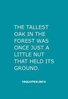 30 Inspirational #Quotes : The tallest oak in the forest was once just a little nut that held its ground. http://18quotes.info/