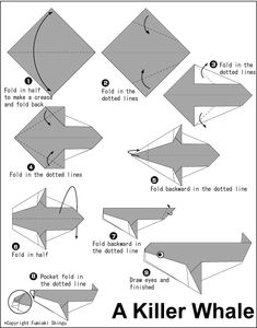 Origami Killer Whale | ... origami origami bunny rabbit origami frog origami mice origami seal