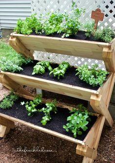 Výsledek obrázku pro jardinera hierbas cocina pinterest