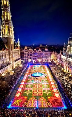Flower Carpet in Brussels arena , August 2014